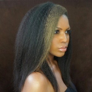250% Density Wigs Pre-Plucked Glueless Lace Front Ponytail Wigs Natural Hair Line for Black Women