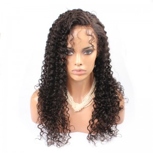 250% Density Wig Pre-Plucked Human Hair Full Lace Wigs Malaysian Hair Kinky Curly Human Hair Wigs