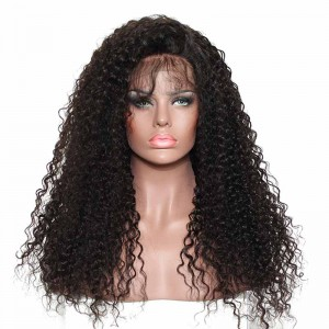 250% Density Wig Pre-Plucked Full Lace Wigs Malaysian Hair Kinky Curly Human Hair Wigs Natural Hair Line